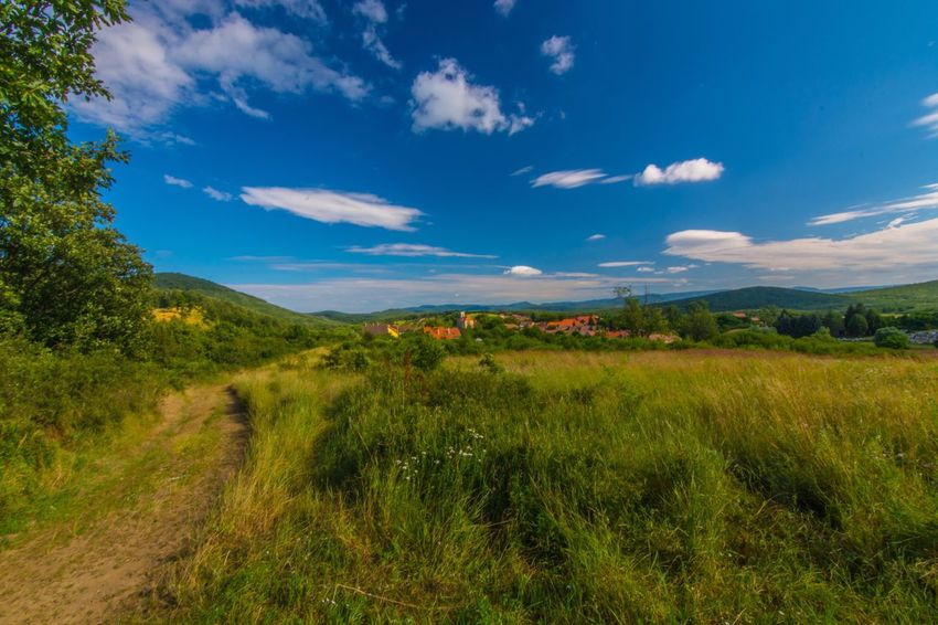 Landscape Tranquil Scene Grass Tranquility Sky Scenics Blue Green Color Nature Beauty In Nature Countryside Borzsony Hungary