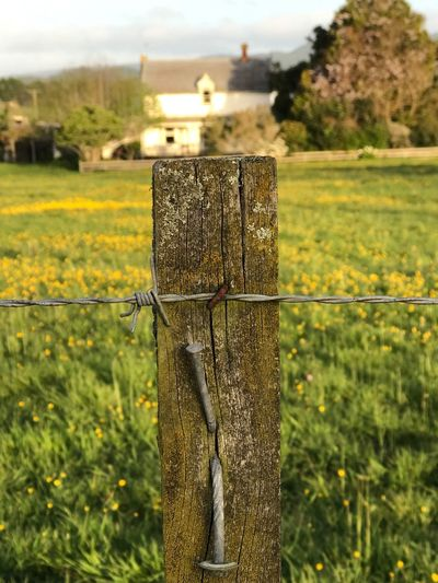 Close-up of wooden fence in field