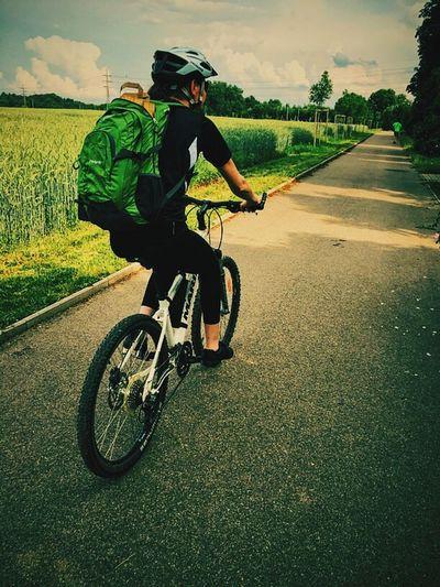 Bike Bike Ride Biker Cycleway Road Pathway Cycling