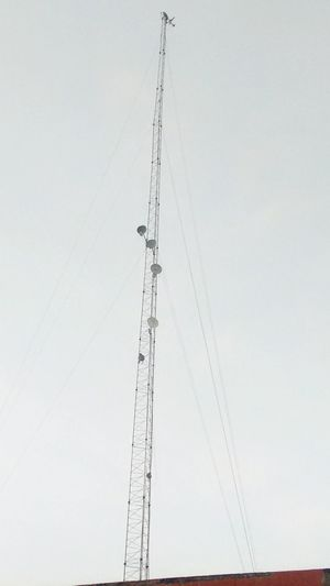 2 Monkey ... 1 Eagel . Tall - High Rooftop No People Power Supply Cable Cloud Clear Sky Connection Low Angle View Outdoors Development Low Angle View Architecture Built Structure Connection Clear Sky Day Development High Section Tall Cloud Cable Sky Outdoors Power Supply First Eyeem Photo