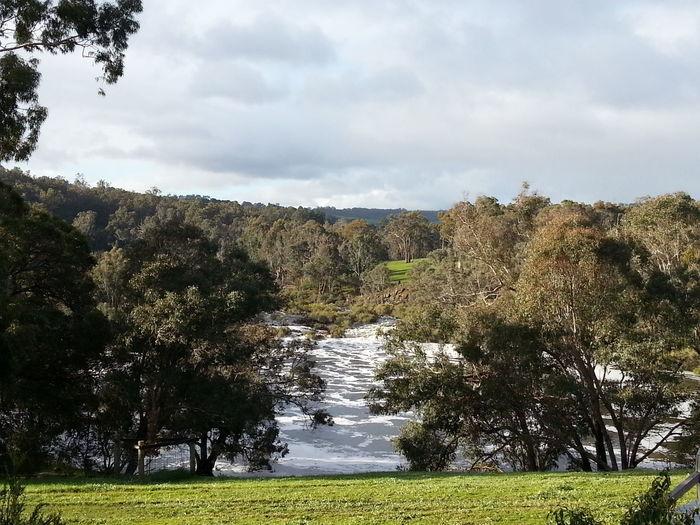 The Basin Bridgetown Western Australia River Blackwood River Farm First Eyeem Photo