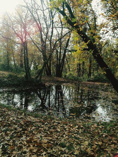 The Small Secret Lake First Eyeem Photo