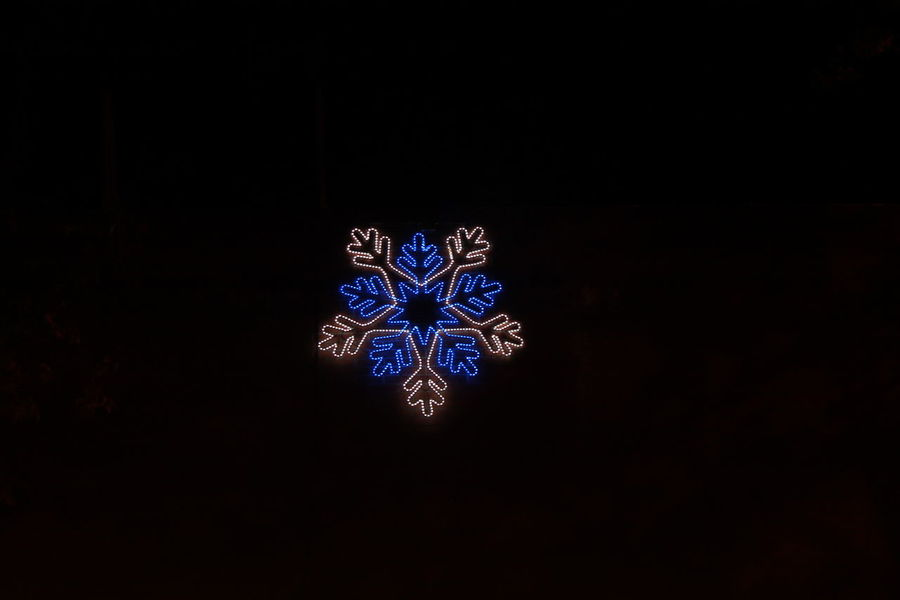 Black Background Blue Close-up Day Indoors  Luces Luces Navideñas Navidad No People