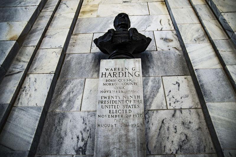 Statue Sculpture Textured  President Warren Warren G Harding Warrengharding NilesOhio Ohio Nikon D3200 Nikon D3200 Photosbyfako