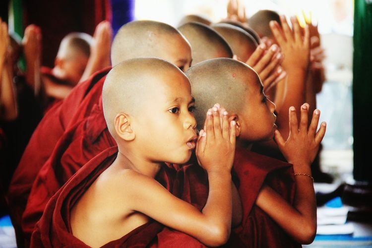 Novice buddhist monks with hands clasped praying in temple