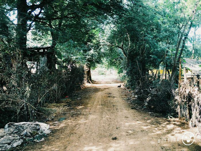 Vishakapatnam Travel Kerala Malayali Malayalee Travel Explore The World Village Wanderlust Tree Landscape Nature Beauty In Nature Scenics Non-urban Scene Calm Road Remote Wanderingalien