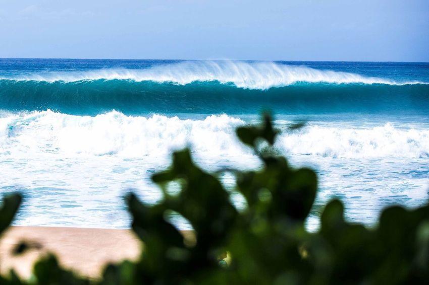 Banzai pipeline Ocean Ocean Waves Crashing Waves, Ocean, Nature Surf Hawaii Life Hawaii Go Higher