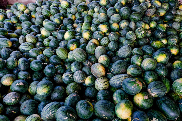 Pile of watermelon after harvest Abundance Animal Food Backgrounds Brussels Sprout Close-up Day Food Food And Drink For Sale Freshness Fruit Full Frame Green Color Harvest Healthy Eating Large Group Of Objects No People Outdoors Pile Retail  Small Vegetable Watermelon
