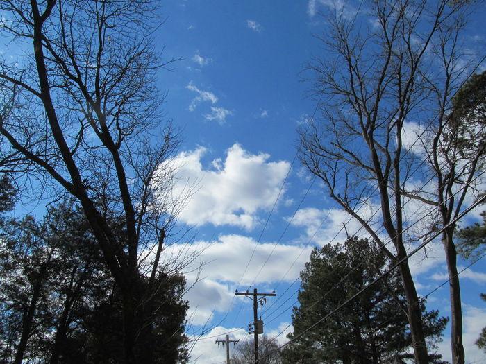 Blue Skies Blue