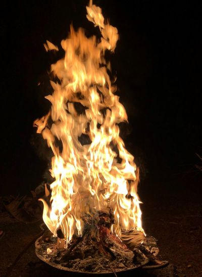 Hanging Out Enjoying Life Check This Out Taking Photos Power Of Fire Flames Face In The Fire Fire Flame Burning Fire - Natural Phenomenon Night Heat - Temperature Glowing Bonfire Log Nature Wood Motion Orange Color No People Land Firewood Wood - Material Field Illuminated Outdoors