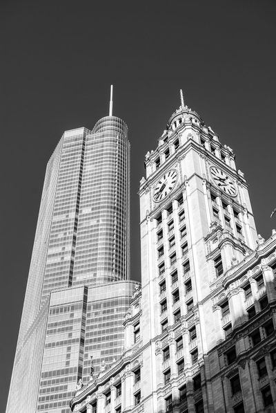 Architectural contrast of old versus modern building in Chicago. Architectural Feature Architecture Black And White Building Exterior Built Structure Chicago Architecture Chicago Skyline Chicago ♥ Clear Sky Downtown Chicago Financial District  Low Angle View Modern Office Building Skyscraper TakeoverContrast Tall - High Tower Travel Travel Destinations Trump Tower United States Urban Exploration Urban Skyline Wrigley Building