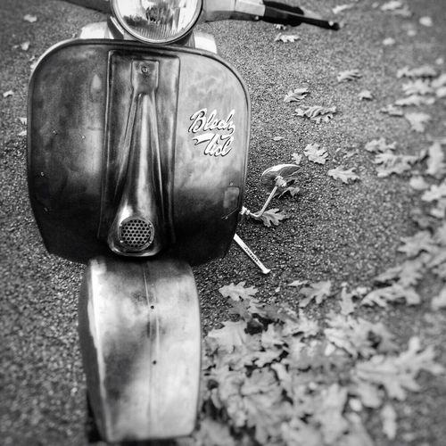 Düsseldorf-Walk Düsseldorf Am Rhein Düsseldorf ♡ Oldtimer Classic Vintage Oldschool Langenfeld Vespa Vespagram Vespaspotting Vespamania Vespacowboys Vespalovers Vespavintage Vespastyle Vespalover Vespapx Vespa Club Vespaclub Vespa, Piaggio Piaggio Hilden Blech Lisl Roller Aus Blech