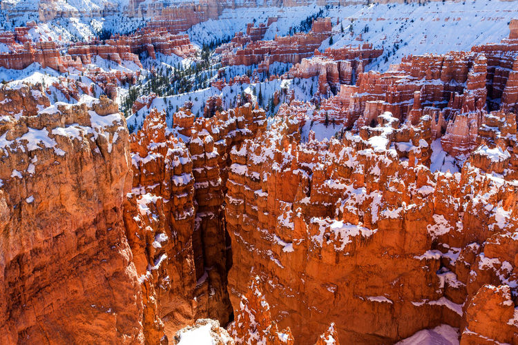 Zion National Park cover by snow in winter, Utah, USA Snow Winter Cold Temperature Non-urban Scene Beauty In Nature Nature No People Rock Formation Geology Environment Day Tranquility Tranquil Scene Travel Destinations Rock Rock - Object Solid Physical Geography Scenics - Nature Outdoors Eroded Canyon Zion National Park