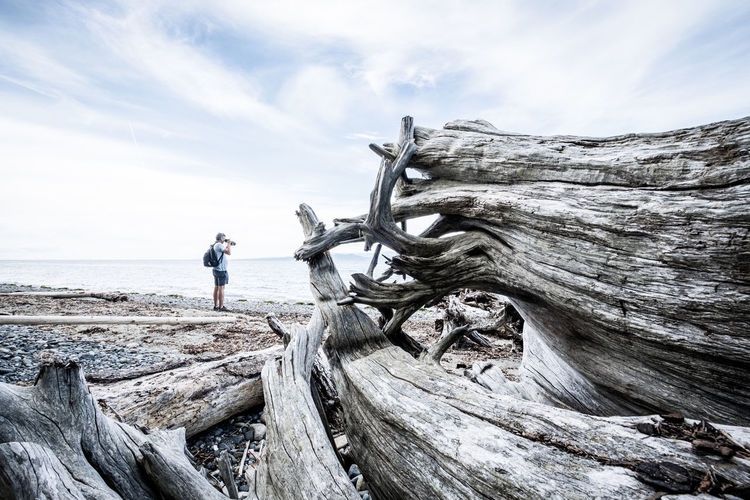 Full length of person standing on driftwood against sky