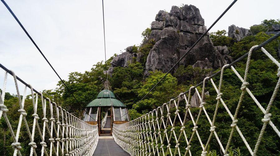 Footbridge amidst trees and plants against sky