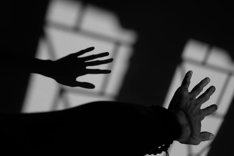Hand and Shadow Human Hand Stop Gesture Shadow Silhouette Reaching HIGH-FIVE Human Finger Close-up Finger Body Part Hand Knee