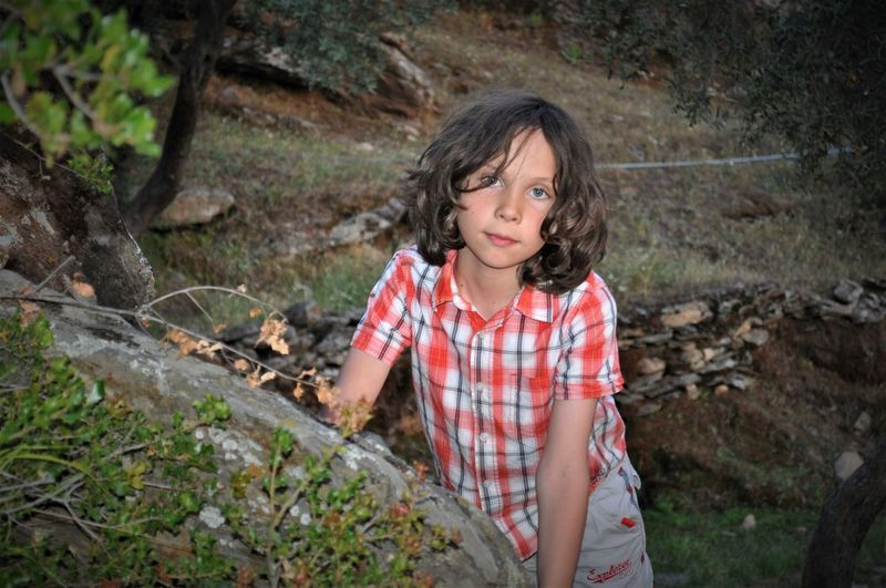 Portrait of boy standing on land in forest