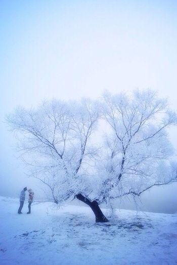 Deepfreeze Hello World Photography Snow First Eyeem Photo 清晨⋯