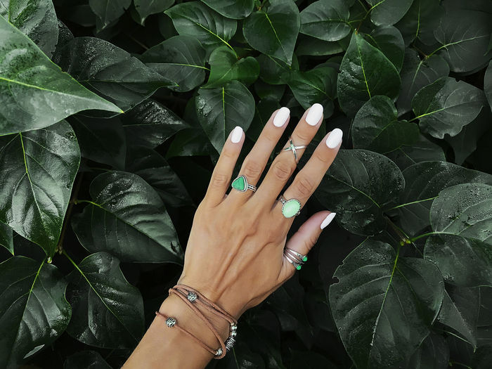 Cropped hand of woman wearing rings over leaves