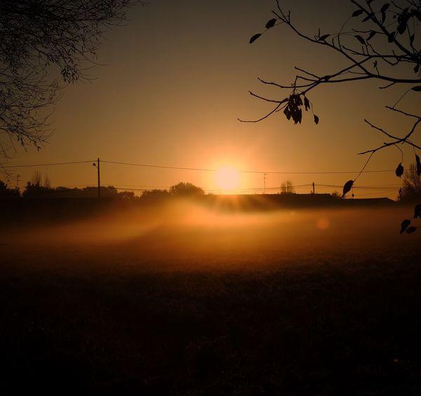 Ô Sunset Silhouette Nature Tree Sun Beauty In Nature Orange Color Landscape Scenics Tranquil Scene Sky No People Tranquility Field Outdoors EyeEm Masterclass EyeEm Best Shots EyeEmNewHere Beauty In Nature Eyeemphotography EyeEmBestPics Best EyeEm Shot Eye4photography