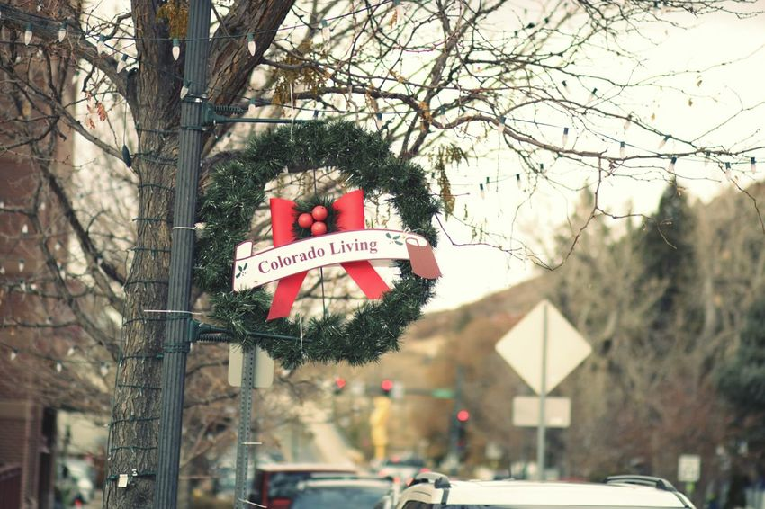 Downtown Castle Rock, holiday cheer. Tree City Outdoors Day Wreath Holidays Downtown Castle Rock, Co