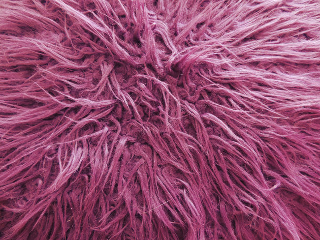 Amazing Background Background Texture Backgrounds Close-up Coat Color Colorfull Colors Colour Colours Colurful Extreme Close-up Freshness Full Frame Fur Hair Intricacy Pink Color Red Soft Softness Vibrant Color Violet Woven