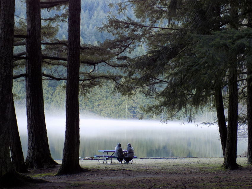 Coffee at the lake. EyeEmNewHere EyeEm Best Shots Vancouver Island Canada Iamnewhere Fog Trees People Adults Lake Coffee Break Women Beautiful Serenity Bicycle Real People Nature Tree Trunk Leisure Activity Sitting Two People Relaxation Togetherness