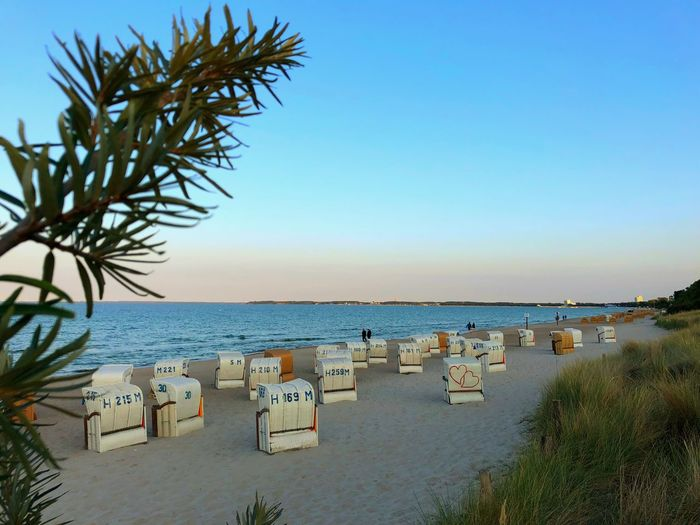Blue Ostsee 😎 Clear Sky Nature Land Sand Tree Outdoors No People