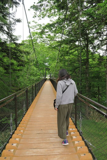 Rear view of woman standing on footbridge amidst trees in forest