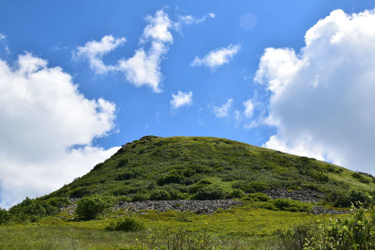 Bieszczady Day Green Color Holydays Landscape Mountain Nature Suny Day