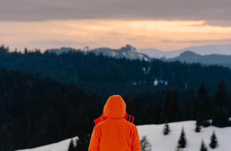 Rear view of man looking at mountain during sunset