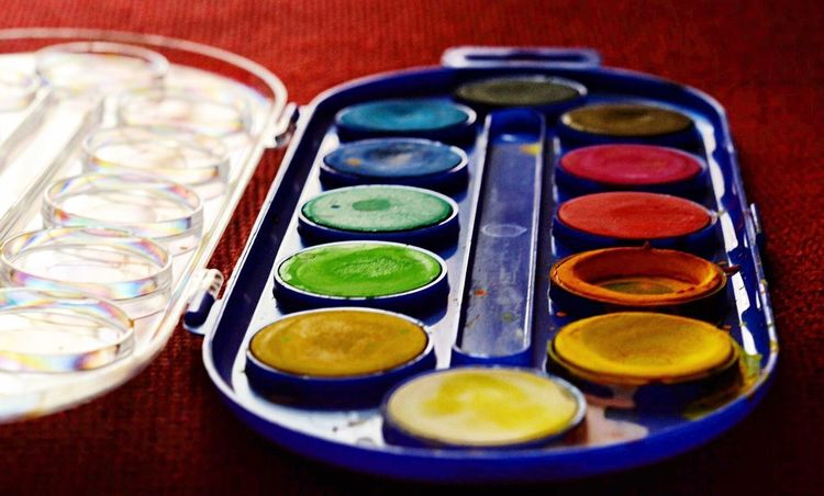 Multi Colored Close-up