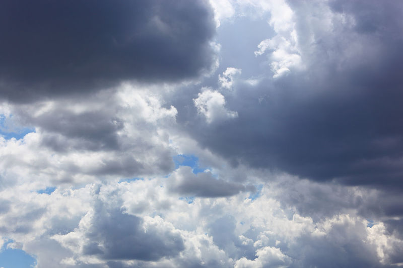 clouds in the sky, rain clouds, low pressure area Dark Clouds Atmosphere Backgrounds Beauty In Nature Blue Climate Cloud - Sky Cloudscape Day Dramatic Sky Environment Fluffy Low Pressure Area Meteorology Moody Sky Nature No People Ominous Outdoors Overcast Rain Rain Clouds Scenics - Nature Sky Storm Wind