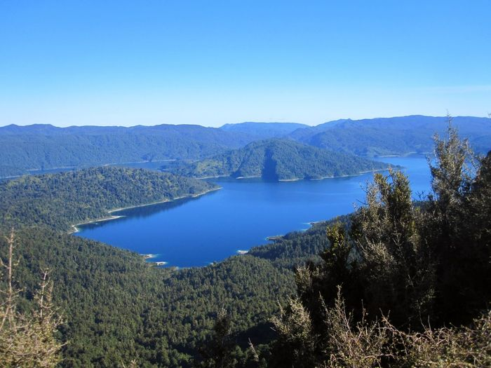 Water Scenics - Nature Mountain Tree Sky Tranquil Scene Nature Beauty In Nature Plant Blue Clear Sky Lake Tranquility No People Day Land Mountain Range Forest Copy Space Outdoors Volcanic Crater New Zealand Lake Waikaremoana