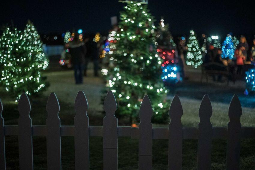 Night Celebration Decoration Illuminated Outdoors Xmas