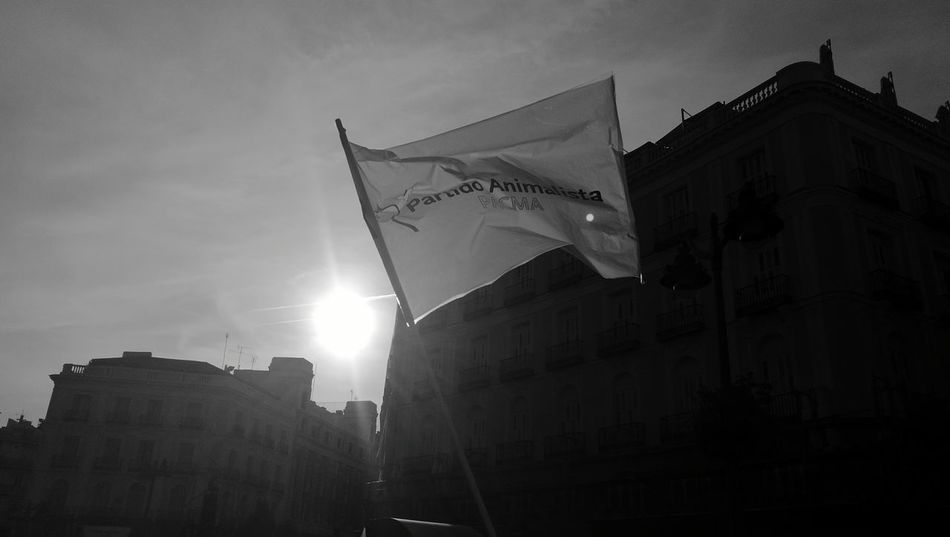 Flag Pacma Architecture Building Exterior Built Structure Low Angle View Sun Tall - High Sky City Modern City Life Development Famous Place Blancoynegro Monochromatic Blackandwhite Photography Manifestación Antitaurina Reinvindicacion Revolution Dramatic HuaweiP9 Leica Plaza Del Sol