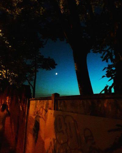 Astronomy Galaxy Star - Space Moon Constellation Illuminated Milky Way Space Sky