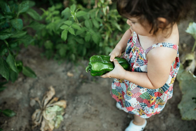 High angle view of girl holding plant