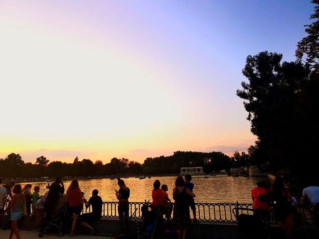 El Retiro #madrid ElRetiro Madrid Tree Sunset Water Silhouette Sky Horizon Over Water Calm