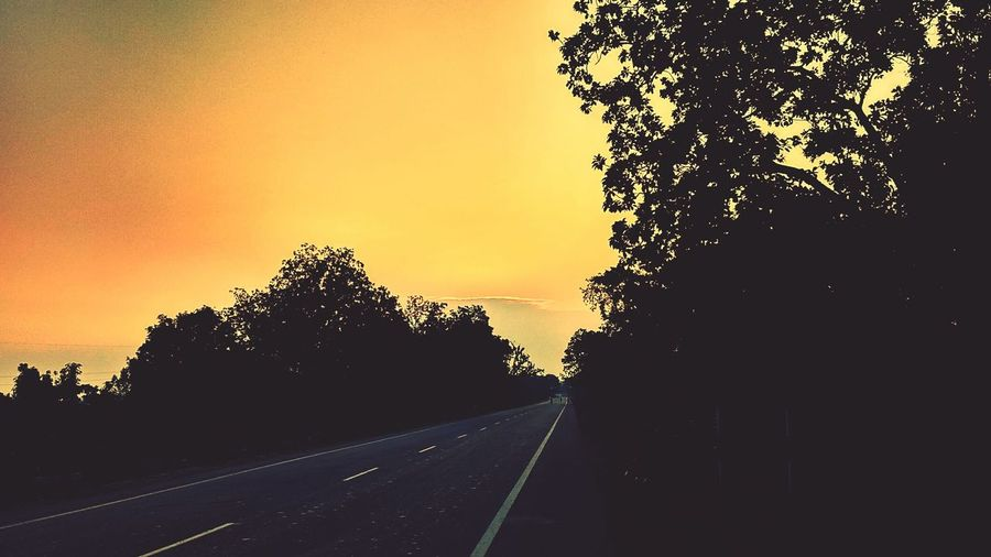 Indian Sunset View+Road+Nature+Tree+ Sunset The Way Forward Road Sky Sunset View Road+Nature Nature Happiness EyeEmNewHere