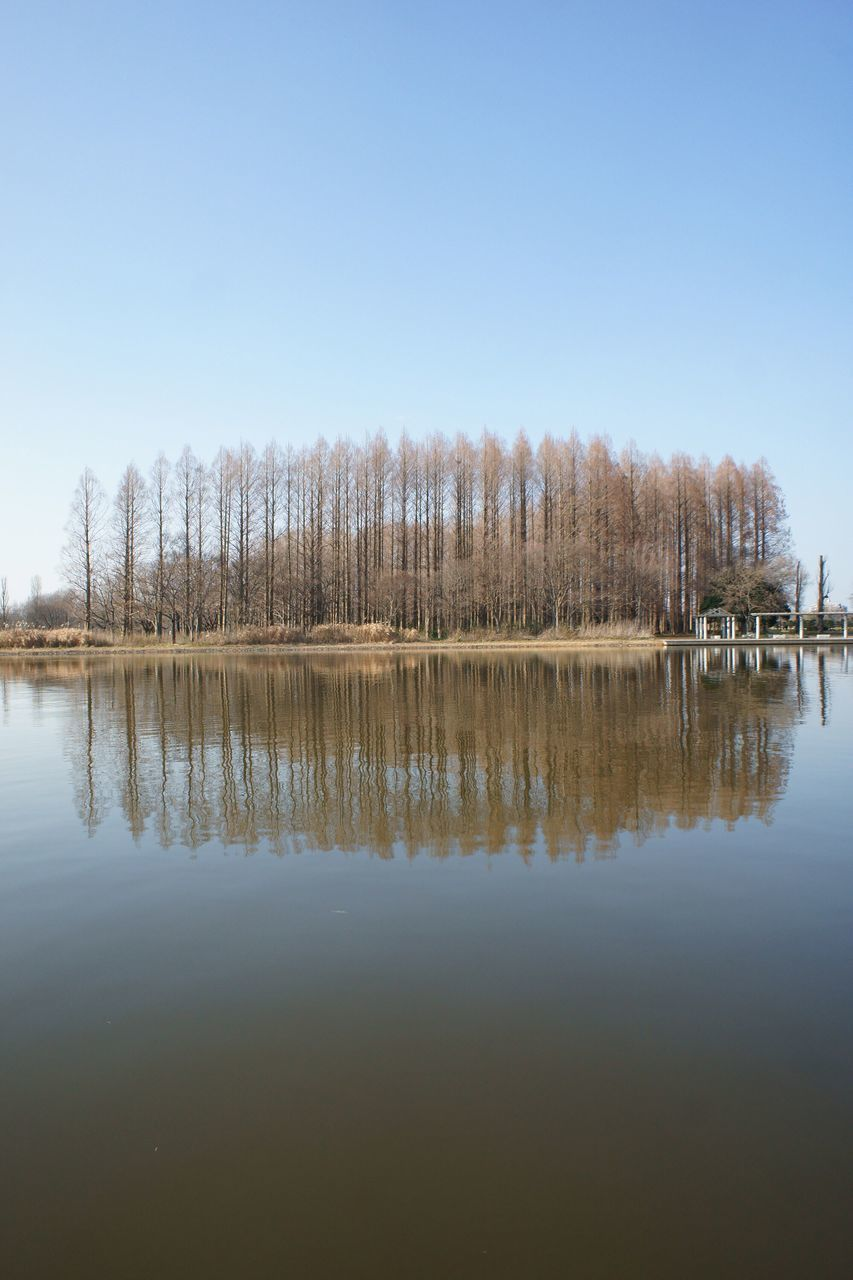 reflection, water, lake, tranquil scene, tranquility, nature, waterfront, beauty in nature, scenics, outdoors, no people, day, clear sky, tree, sky