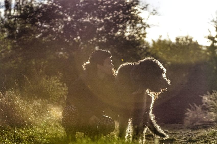 Animal Nature Togetherness Love <3 Animal Themes Loyalty Warm Clothing Dogs Life Looking Dogs Of EyeEm Dogs Zoology Baby Boy ♥ Domestic Animals Irish Wolfhound Willi The Wolfhound Looking At Camera Gentle Giant. Mother And Son Bonding Outdoors Nature