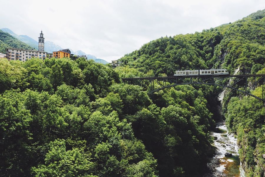 Green Green Green!  Summer Outdoors Bridge Train Trainbridge Village Mountain Valley From My Point Of View River The Great Outdoors - 2016 EyeEm Awards Nature Tree Forest Architecture Travel Destinations Hill Idyllic Scenics Day at Valle Maggia, Switzerland On The Way