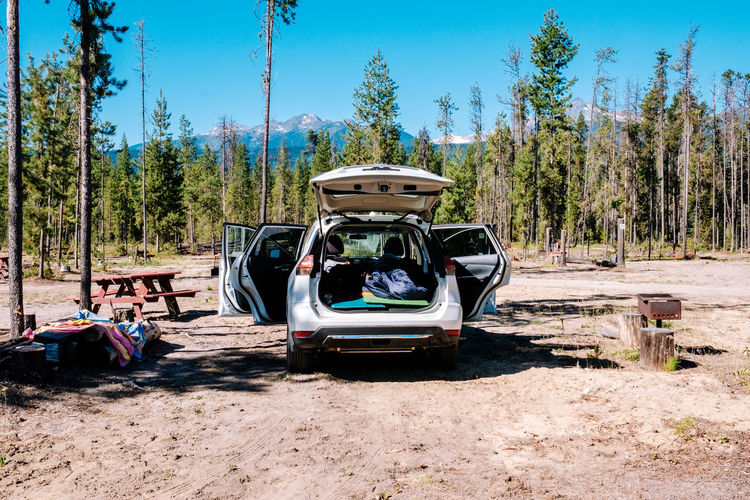 Camping Campinglife Day Forest Lagguage Land Vehicle Lifestyles Men Nature Outdoors People Real People Roadtrip Sky Transportation Tree