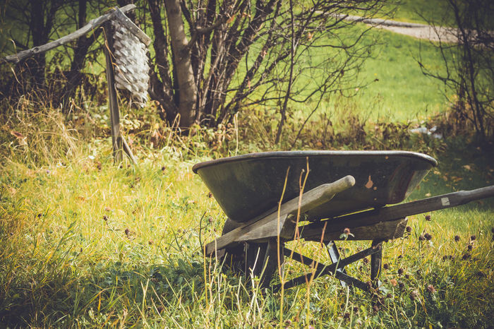 Abandoned Absence Clover Deserted Empty Feedbag Field Field Garden Garden Photography Grass Grass Green No People Old Rusty Showcase March Sunlight This Week On Eyeem Tranquility The Essence of Summer Vintage Wheelbarrow Wood - Material Worn The Great Outdoors - 2016 EyeEm Awards