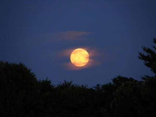 To the moon and back? Moon Moonlight Moonglow  Summertime Summer