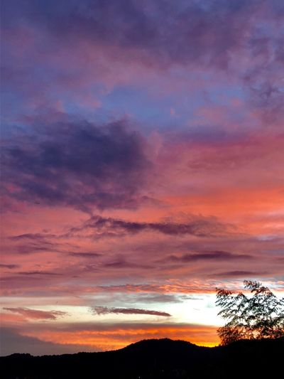 A Dramatic Sunset Sky. (180901-181013) Cloud - Sky Sky Sunset Beauty In Nature Silhouette Scenics - Nature Tranquility Tranquil Scene Nature Plant Tree Dramatic Sky Orange Color Multi Colored Dusk Idyllic Outdoors No People Low Angle View