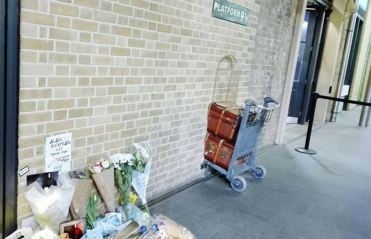 Built Structure Architecture Indoors  No People Day Kings Cross Station, London 9 3/4 Alan Rickman Death Memories ❤ Memorial Day Flower Photography Harry Potter ⚡ Professor Snape Slitherin Hogwarts School Of Witchcraft And Wizardry Always