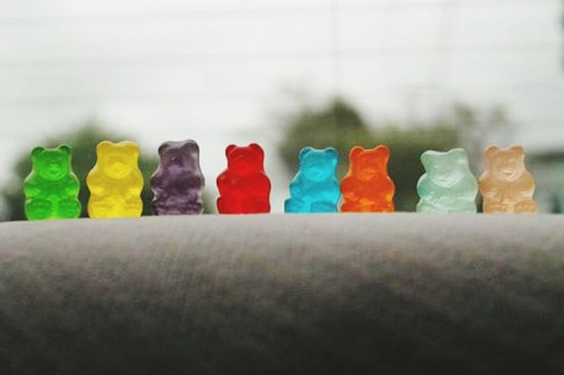 Bear Bears Colors Taking Photos Relaxing Candy Candys Candy Time Color Colorful Hungry Delicious Delicious ♡ Delicius Delicioso Delicius♥ Delicius:3 Delicius Candy Deliciuous Delicous Dulce Dulcesitooooss  Dulce.