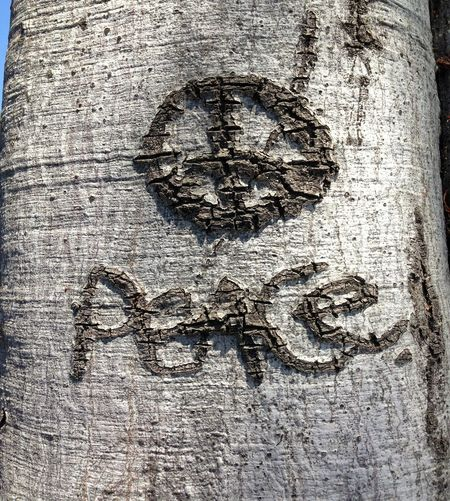Deceptively Simple Peace Peace Sign  Peace Signs Carving In Wood Signs Peace ✌ Tree Carving Symbol Symbols Home Is Where The Art Is Color Palette Handmade For You